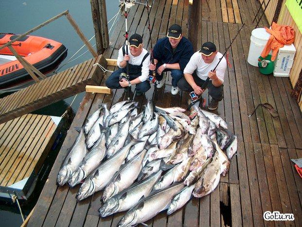 лучшие места для морской рыбалки в норвегии